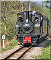 NY6949 : South Tynedale Railway by Peter McDermott