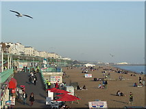 TQ3103 : Brighton beach by Malc McDonald