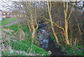 TQ2495 : Dollis Brook by N Chadwick