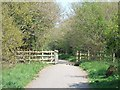 SY0381 : Bridge on NCN 2 near Quentance Farm by David Smith