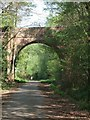 SY0482 : Castle Lane bridge over NCN 2 by David Smith