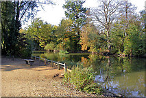 TQ2468 : Lake on Cannon Hill Common by Ben Brooksbank
