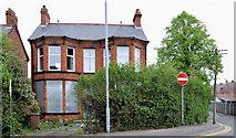 J3774 : No 18 Dundela Avenue, Belfast (2011) by Albert Bridge
