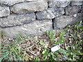 SJ5172 : Cut Mark #2: Manley Road, Manley by VBForever