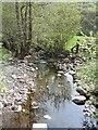 SN9290 : Afon Trannon downstream at Gwernafon by John M