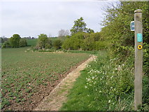 TM2765 : Footpath to Framlingham Hall & Peppers Wash by Adrian Cable