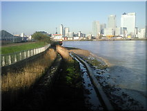 TQ3880 : Planted reed bed on the Thames river bank by Marathon