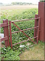 TM3156 : Footpath Gate on footpath to the A12 Main Road by Adrian Cable