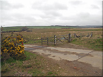 SS2620 : Cattle grid at Tosberry Moor by Row17