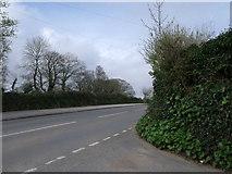 SW5530 : Trescowe Road, Perran Downs, Cornwall by nick macneill