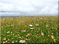 NL9847 : Machair and sea near Clachan Mor by iamthehughes