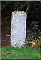 NG5436 : Symbol Stone by Glen Breaden