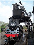 NZ8204 : Steam locomotive at the coal loader, Grosmont depot by David Martin