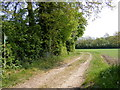 TM3463 : Footpath to Glemham Road by Geographer