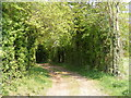 TM3463 : Footpath to Glemham Road by Adrian Cable