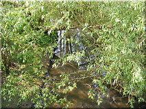TM3464 : River Alde at Rendham Bridge by Adrian Cable