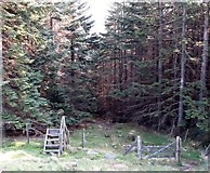J3629 : Rickety stile, broken gate and a gap in the fence providing access from the mountain by Eric Jones