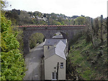 SC4384 : Rail Bridge at Laxey by David Dixon
