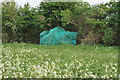 SO8646 : Netting over a hedge at Kerswell Green by Philip Halling