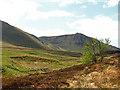NN8536 : View from Glen Lochan path by William Starkey