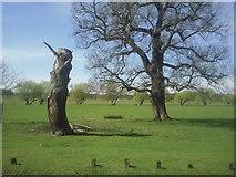 TQ2173 : Tree 'sculpture' in Richmond Park by Marathon