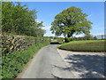 SD5977 : Hosticle Lane outside Sellet Hall by Chris Heaton