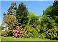 TQ9949 : Gardens to the south of Beech Court House, Challock by pam fray