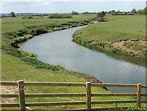 SE7975 : River Rye and flood plain by Pauline E