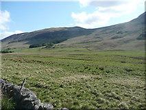 NO3173 : Pasture in Glen Clova  by Russel Wills