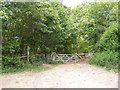 TM3258 : Pound Lane Footpath by Adrian Cable