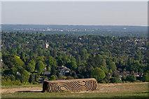 "TQ2652 : ""Surrey Hills"" bench, Reigate Hill by Ian Capper"