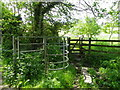 ST9429 : Kissing gates, Tisbury by Maigheach-gheal