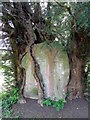 ST9429 : Trapped boulder, St John the Baptist's Churchyard by Maigheach-gheal
