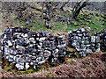 NM6674 : Ruin at Egnaig by Rick Adam