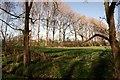 SJ4161 : Field on the Crook of Dee by Jeff Buck