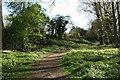 SJ4161 : Footpath near the River Dee, Cheshire by Jeff Buck