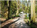 NS3882 : Paths behind the National Park Gateway Centre by Lairich Rig
