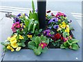 SH5638 : Floral Display, Porthmadog, Gwynedd by Christine Matthews