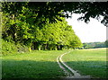 SP8600 : Footpath to Stony Green by Graham Horn