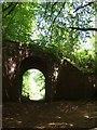 SY1090 : East Devon Way passing under a bridge by David Smith