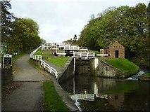 SE1039 : Bingley Five Rise Locks by Ashley Dace
