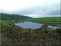 NX4858 : Small loch east of Creetown, Galloway by Anthony O'Neil