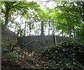 SJ9694 : Behind Godley Hill War Memorial by Gerald England
