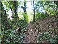 SJ9694 : Godley Hill Footpath by Gerald England