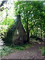 SW8761 : Derelict house in the woods by Tony Atkin