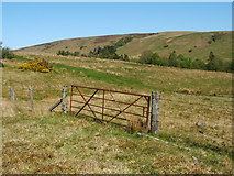 NS4277 : Gate near Square Wood by Lairich Rig