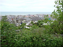 SN4562 : Some of the back gardens of Aberaeron by Jeremy Bolwell
