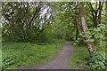 SD6411 : A footpath in Horwich by Ian Greig