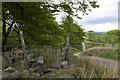 SD6612 : A stile into Holden's Plantation and the bridleway passing by Ian Greig