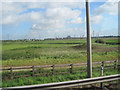 SJ4272 : Fields at end of M53 slip road to M56 by John Firth